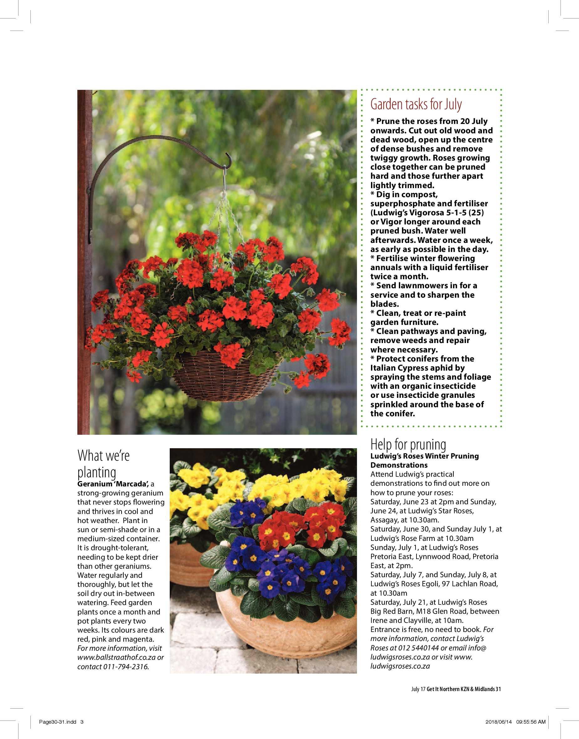 northern-kzn-midlands-get-july-2018-epapers-page-33